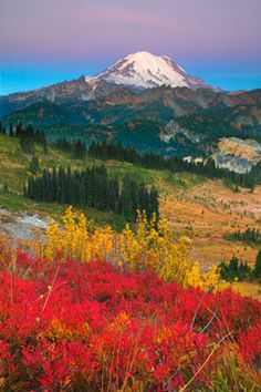 A collection of stunning mountain images by acclaimed fine-art nature photographer Kevin Ebi. All Nature, Amazing Nature, Mountain Photography, Nature Photography, Life Is Beautiful, Beautiful Places, Beautiful Pictures, Mountain Images, Evergreen State