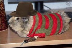 Thank you Mr. Hampster for reminding us that Wes Craven still lives through the characters he created.