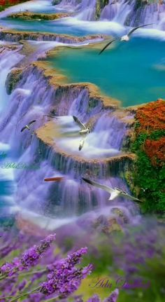 So picturesque. Lovely colours in this waterfall So picturesque. Lovely colours in this waterfall Beautiful World, Beautiful Places, Beautiful Pictures, Scenery Pictures, Nature Pictures, Beautiful Nature Wallpaper, Beautiful Landscapes, Landscape Photography, Nature Photography