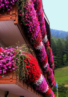 Flower balconies in