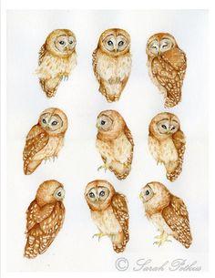 Owl Art archival 5x7 print by foxhollowart on Etsy, $10.00