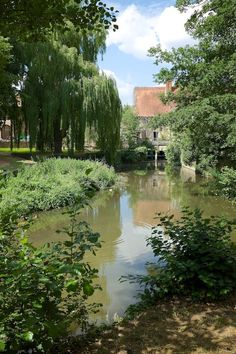 Magdalen College - Oxford, England