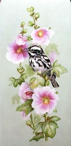 http://www.hubbardscupboardpackets.com/images/Birds/Black_and_White_Warbler.jpg