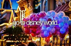 Go to disney world !