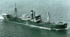 skipshistorie Merchant Navy, Trondheim, Sailing Ships, Swan, The Past, Boats, Merchant Marine, Swans, Sailboat