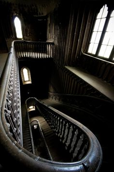 Interior staircase at Charleville Forest Castle, near Tullamore in Offaly county, Ireland. Most Haunted, Haunted Places, Haunted Castles, Haunted Mansion, Abandoned Buildings, Abandoned Places, Interior Staircase, Black Staircase, Stairs Architecture