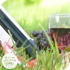 Una salida con vino! Un buen día de campo! #Picnic!