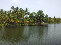 From what I had imagined the backwaters in my head, the view definitely did justice to it. And yet, the feeling of being in the midst of the green serenity was just pure bliss. #Kerala #Alleppey #Backwaters #Travel #Travelogue