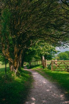 New nature pictures country paths Ideas Country Life, Country Living, Country Roads, Country Art, Landscape Photography, Nature Photography, Photography Tricks, Digital Photography, Photography Studios