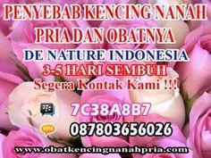 http://obatkencingnanahpria.com/penyebab-kencing-nanah-pria-dan-obatnya/