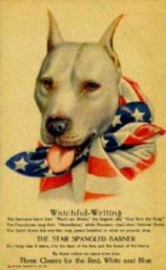 America's Nanny Dog