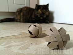 TP Roll DIY Cat Toy - we love making things for  our pets. Here is a simple and cute DIY CAT TOY made from TP Rolls. Genius! Check out the step by step photos or watch the video.