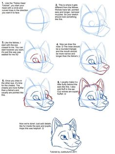 Cartoon Drawing Tips How to Draw Canines: Head by *JustAutumn on deviantART - Drawing Techniques, Drawing Tips, Drawing Reference, Drawing Sketches, Cartoon Drawing Tutorial, Cartoon Drawings, Drawing Cartoon People, Cartoon Art, Animal Sketches