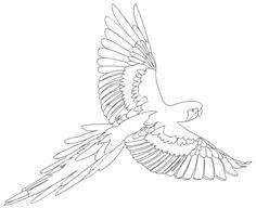 ausmalbilder, malvorlagen - papagei kostenlos zum ausdrucken | märchen aus aller welt, der