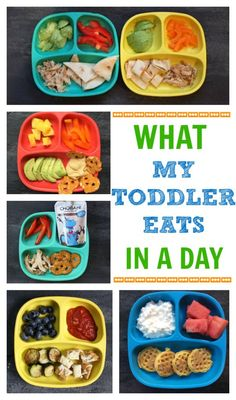 If you've had the luxury of making meals for a toddler you'll quickly appreciate the one constant that comes from creating a toddler feeding routine. Here's a look at what my toddler eats in a day- from breakfast to dinner and snacks included!