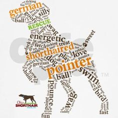 German Shorthaired Pointer - . Great outline and accurately captures the personality traits and temperament of a Shorthair:
