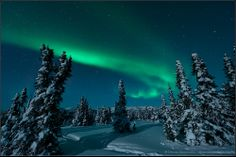 I loved seeing the dramatic Northern Lights in Alaska. [Aurora over Fairbanks, Alaska, USA Image Credit & Copyright: Dennis Mammana] Places To Travel, Places To Go, Nature Photography, Travel Photography, Sunset Pictures, Sunset Pics, To Infinity And Beyond, Aurora Borealis, Science And Nature