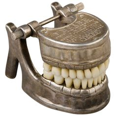 French Vecabe Dental Model | From a unique collection of antique and modern curiosities at https://www.1stdibs.com/furniture/more-furniture-collectibles/curiosities/