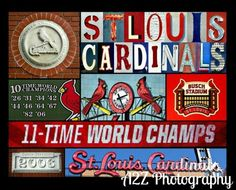 St Louis Cardinals Collage