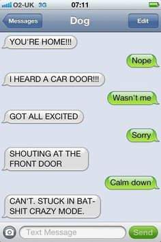 Dog texts. Border Collie bat shit crazy mode Hahahaha! Funny Dog Texts, Funny Dogs, Hilarious Animals, Dumb Dogs, Hilarious Texts, Drunk Texts, Epic Texts, If Dogs Could Text, Funny Text Messages