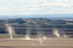 Multiple dust devils under big thermals - Willamette Valley, OR Photo by Paul Naton http://www.radiocarbonart.com/