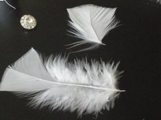 If you've been searching high and low for a delicate feather fascinator for your wedding that doesn't break your budget, stop your search! Because Tribe member Lovelylady has the perfect …