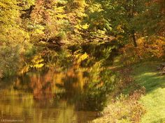 Sandy Creek Watershed, Mercer County PA Mercer County, Rivers, Lakes, Westerns, Painting, Painting Art, River, Paintings, Painted Canvas