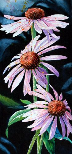 Purple Cone Flowers by Hanne Lore Koehler ~ watercolor floral