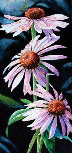 Purple Cone Flowers by Hanne Lore Koehler ~ watercolor floral