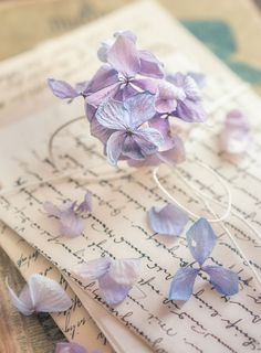Sweet memories by Nguyen Thuy Duong - Photo 184693025 / Lavender Aesthetic, Flower Aesthetic, Love Letters To Your Boyfriend, Old Fashioned Love, Book Flowers, Old Letters, Vintage Lettering, Purple Love, Sweet Memories