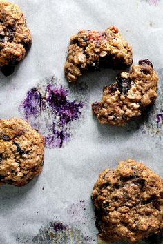 oat meal chocolate blueberry cookies | lady and pups