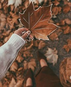 Image about girl in Photography 💙 by - Autumn photography inspiration - Wallpaper Vsco Pictures, Fall Pictures, Fall Photos, Fall Pics, Autumn Photography, Image Photography, Creative Photography, Photography Tutorials, Digital Photography