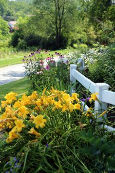 A welcoming combination | FineGardening