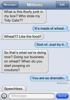 Mittens the text messaging cat (PART - Funny Texts Funny Animal Quotes, Funny Animals, Funny Quotes, Animals Dog, Dog Texts, Funny Texts, 9gag Funny, Text From Mittens, Cat Text