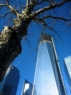 9/11 Memorial in Pictures – Freedom Tower, NY and were still here and stronger then ever ...OUR LOVE FOR THE USA..