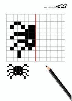 Örümcek simetri