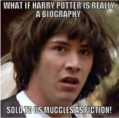 Harry Potter Meme. Realization.