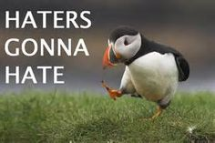 haters - Yahoo Image Search Results