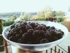 A bowl full of blackberries, yum