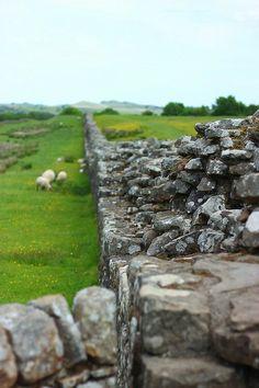 hadrian's wall Village Girl, Farms Living, Farm Life, Country, Hadrian's Wall, Stiles, Highlands, Fences, Gates