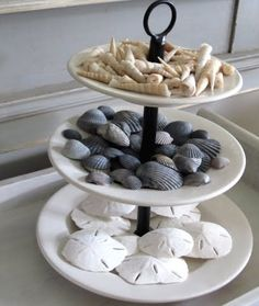 30 ways to display a seashell collection, design d cor, Three tier tray holds a seashell collection and sand dollars found on the beach