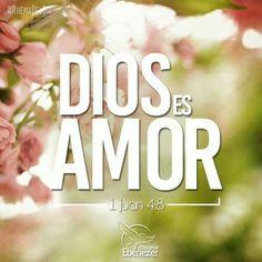 1 Juan 4:6-8 Nosotros somos de Dios; el que conoce a Dios, nos oye; el que no es de Dios, no nos oye. En esto conocemos el espíritu de verdad y el espíritu de error. Amados, amémonos unos a otros; porque el amor es de Dios. Todo aquel que ama, es nacido de Dios, y conoce a Dios. El que no ama, no ha conocido a Dios; porque Dios es amor.♔