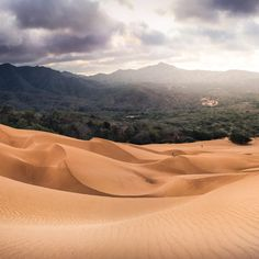 Dunas de Macuira, La Guajira 📸 (Pano 2/4) Oasis, Going On A Trip, Cool Pictures, Places To Visit, To Go, Instagram, Travel, Dune, Natural Playgrounds