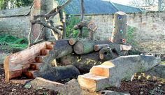 Natural Climbing Structure with Carved Oak Steps, Climbing Grips, and Fallen Oak Logs