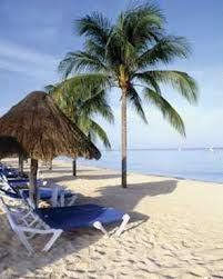 White sand, palm trees, warm tropical water...all that's missing is you!