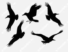 Image result for crow outline
