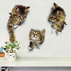 Wall Decals Stickers Vivid Decors Murals (Cat) for Room Home Removable Wall Art Decals Wall for kids Rooms DIY Home DecorationBuy Cats Wall Sticker Hole View Bathroom Living Room Decoration Home Decor Animal Vinyl Decals Art Poster cute Toilet Sticke Wall Stickers Toilet, 3d Wall Decals, Removable Wall Stickers, Vinyl Decals, Cat Decals, Wall Vinyl, Cat Stickers, Room Stickers, Window Stickers