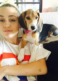 Miley and Barbie the Beagle
