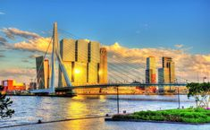 Considering taking a day trip to Rotterdam? I've created a one day guide to Rotterdam, covering Rotterdam's best things to do in Rotterdam with a free self-guided walking itinerary covering this modern Dutch city. Hotel New York, Rotterdam Netherlands, Famous Bridges, His Travel, Best Cities, Day Trip, Where To Go, San Francisco Skyline, Travel Photos