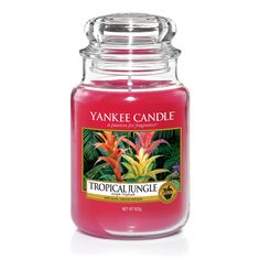 Tropical Jungle Large Jar Candle Tropical Jungle from Yankee Candle is an exotic blend of the scent of fruit and flowers in a sweet lush mix with green jungle leaf.